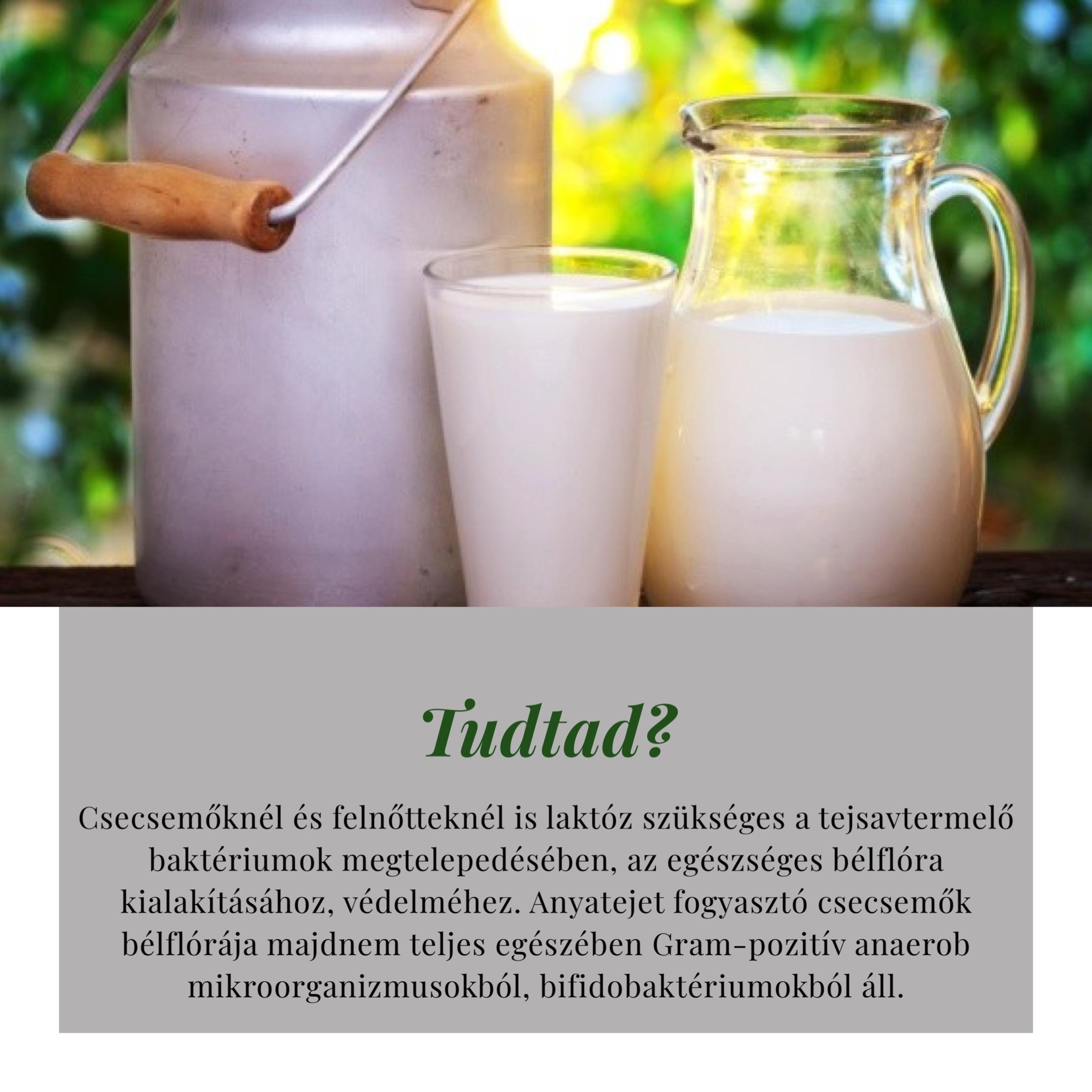 visszér és tejtermékek)