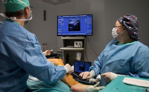 A sebész visszeres-e