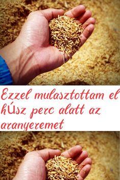Táplálkozással a visszérproblémák ellen - HáziPatika