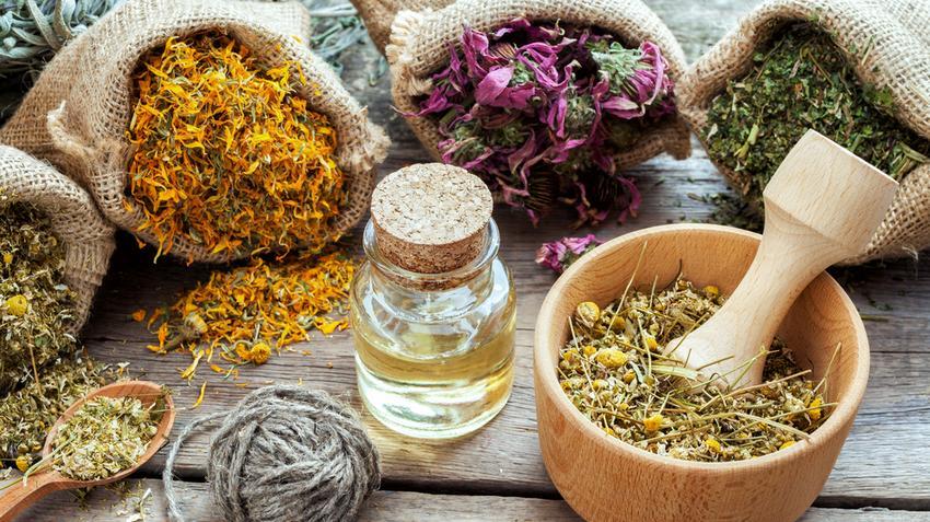 hatékony gyógynövények a visszér ellen