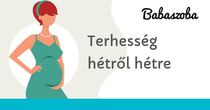 minden terhes nőnek kismedencei varikózisa van