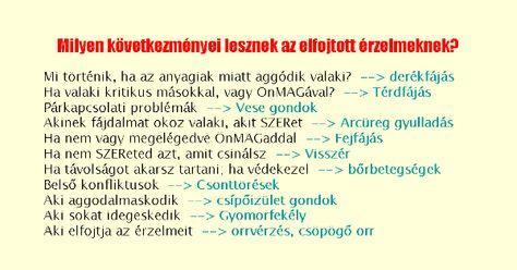 képzési program visszér)