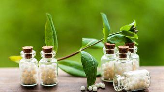 A visszérbetegségeket homeopatával kezeltem)