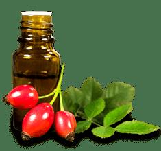 Csipkebogyómag-olaj (vadrózsaolaj) BIO