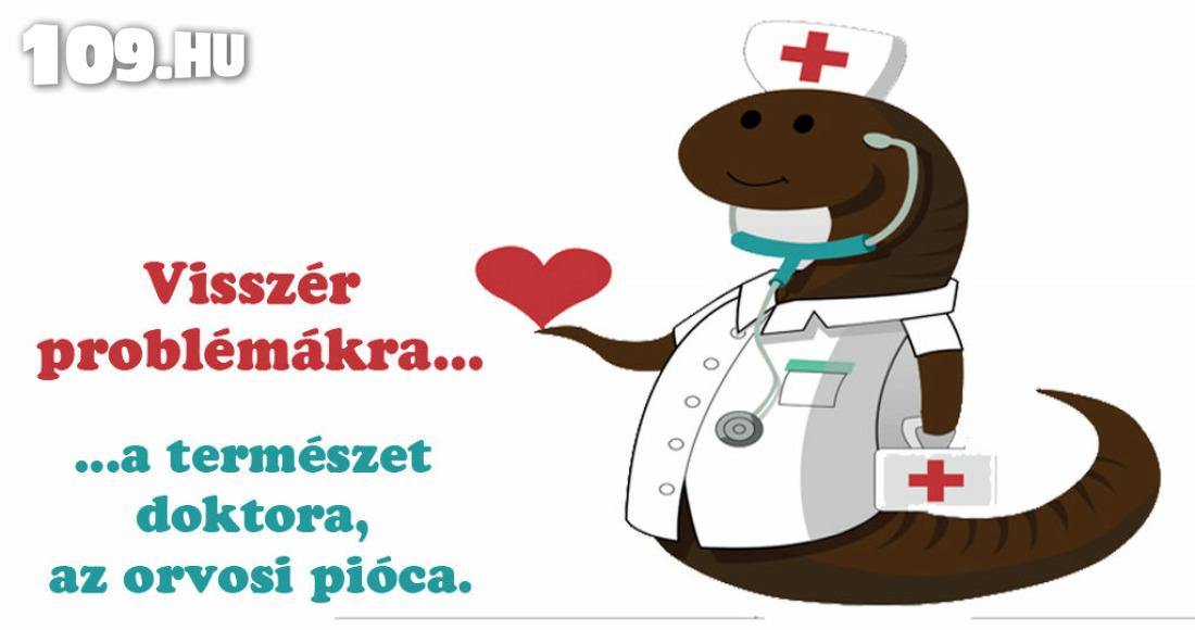 piócák visszér kezelés)
