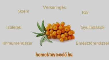 homoktövis visszér kezelés)