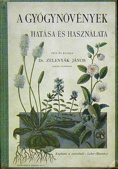 gyűjtemény a visszeres gyógynövényekből a Kaukázusban