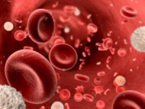 bőséges vérzés visszérrel)